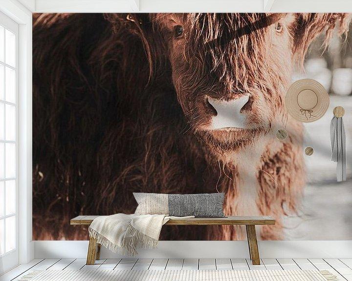 Sfeerimpressie behang: Schotse hooglander in de sneeuw van Melanie Schat