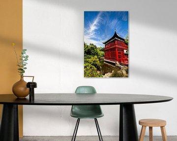China van Scholtes Fotografie