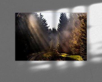 Wernigerode - Brocken van Scholtes Fotografie