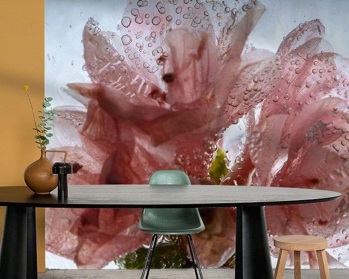 Beispiel fototapete: Azalee in kristallklarem Eis 2 von Marc Heiligenstein