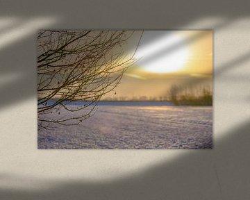 winters zicht van Tania Perneel