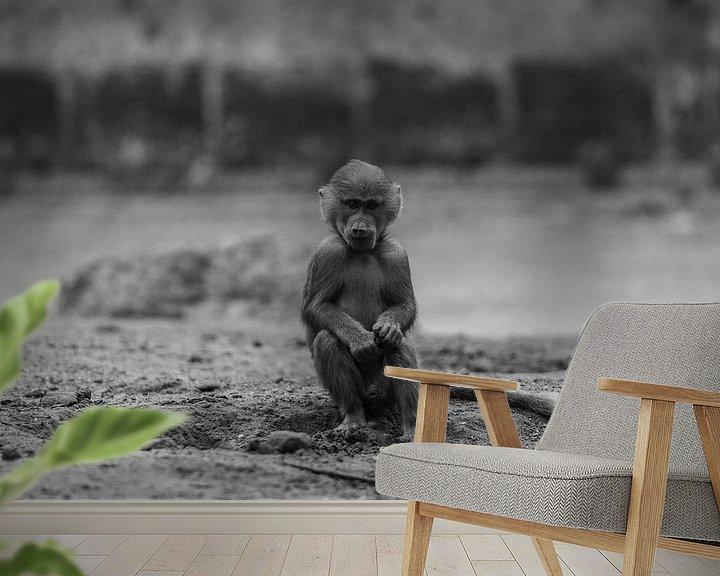 Sfeerimpressie behang: Jonge baviaan in Amersfoort van Kaj Hendriks