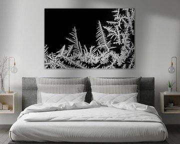 ijs-art-ijskristallen IV van Klaartje Majoor