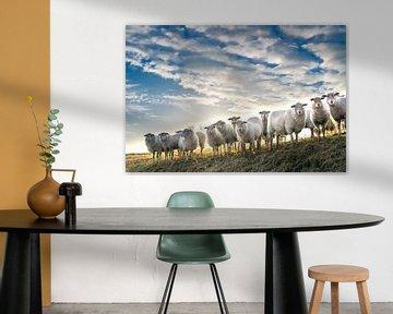 Schapenwolkjes. van Henri Boer Fotografie