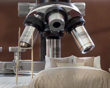 Microscoop van Carel van der Lippe