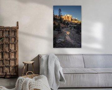 Bryce canyon. van Remco van Adrichem