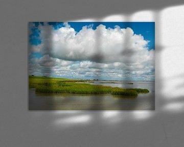 Schorren in Westerschelde van Sky Pictures Fotografie