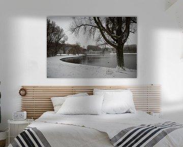 een vijver in de winter met bomen en sneeuw