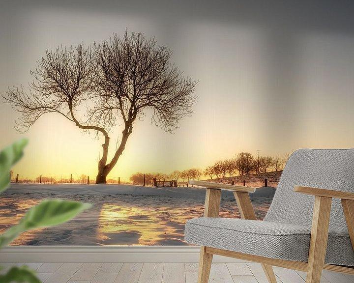 Sfeerimpressie behang: Boom in ochtendlicht #3 van Lex Schulte