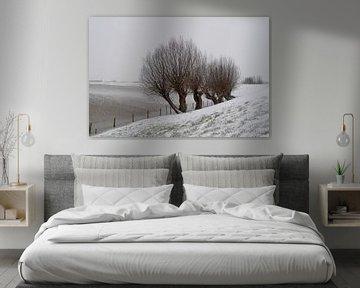 Winterse tafereel in Nederland