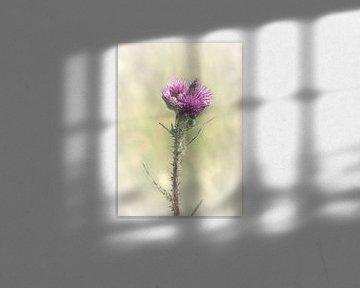 Wildpflanze von Naomi van Mierlo