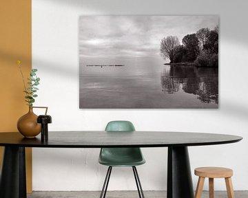 50 tinten grijs aan het Ijsselmeer van Bob Bleeker