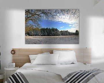 Winters landschap van M de Vos