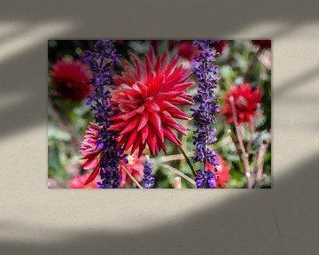 Digi gemalt Blumen 03 von Hans Levendig (lev&dig fotografie)