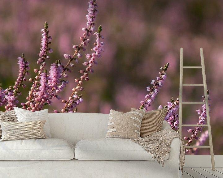 Beispiel fototapete: Heidekraut in Blüte von Katrin May