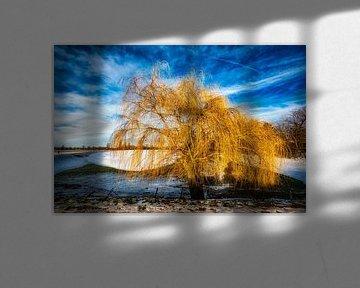 Winterlandschaft mit Baum und Schnee und Wolkenformation am R von Dieter Walther