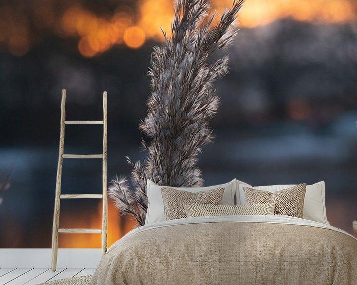 Sfeerimpressie behang: Riet pluim bij zonsondergang van Matthijs Noordeloos