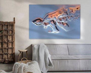 Eisskulptur von Ko Hoogesteger