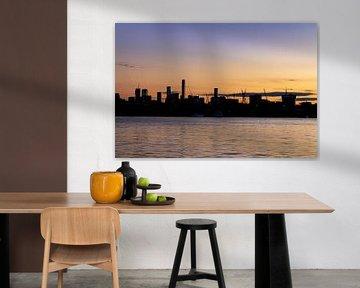die Silhouetten von Brisbane von hugo veldmeijer