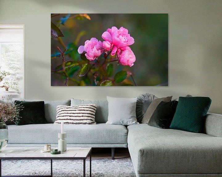 Sfeerimpressie: Wilde roos in kleurrijke herfst in Duitsland van Babetts Bildergalerie