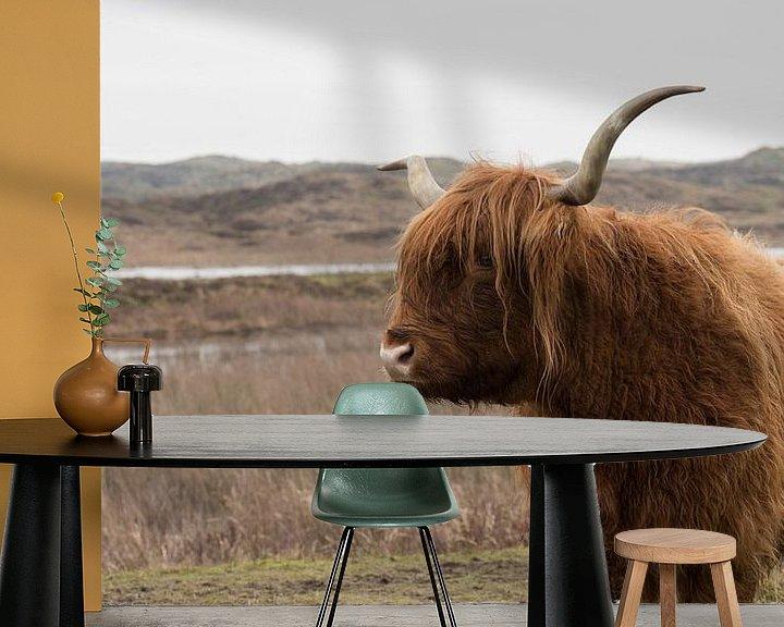 Sfeerimpressie behang: Schotse Hooglander op Texel van Dick Carlier