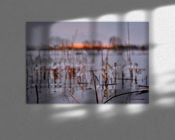 Druppel ijs in de stille natuur langs het water bij zonsopkomst van BJ Fleers