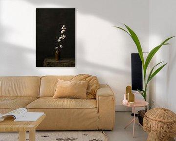 Foto eines Baumwollzweigs in einer Vase vor einem dunklen Hintergrund von Jenneke Boeijink