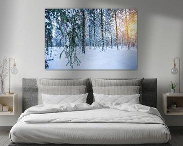 Winter wonderland van Richard Driessen