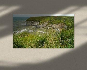 Flamborough Cliffs von Babetts Bildergalerie