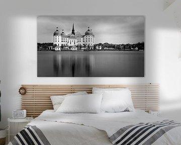 Schloss Moritzburg in schwarz-weiß