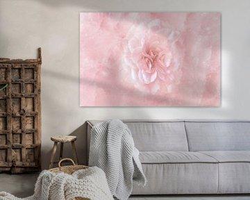 Rose Rose auf Rosenquarz von Peter Hermus