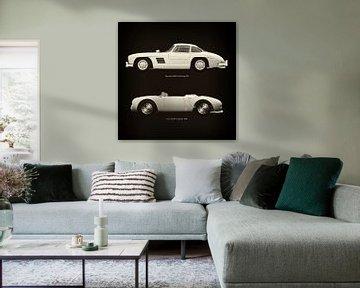 Mercedes 300SL Gullwing 1954 en Porsche 550-A Spyder 1956