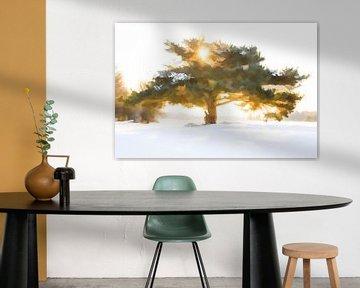 Sonne durch den Baum. von Michar Peppenster