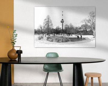 Winter in Het Park bij de Euromast in Rotterdam