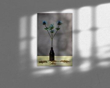 Distel met schaduw. Studiofotografie! van Lieke van Grinsven van Aarle