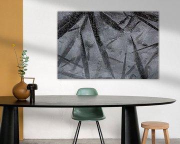 ijsbloemen of ijs-sterren van Wendy de Waal