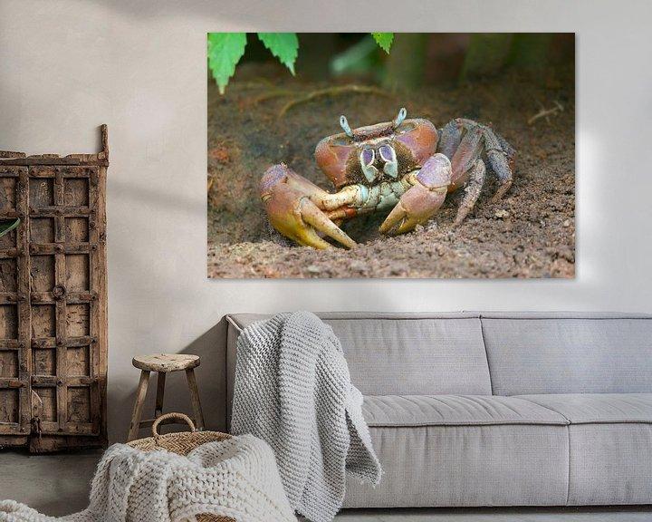 Sfeerimpressie: Aldabra landkrab (Cardisoma carnifex) van Dirk Rüter