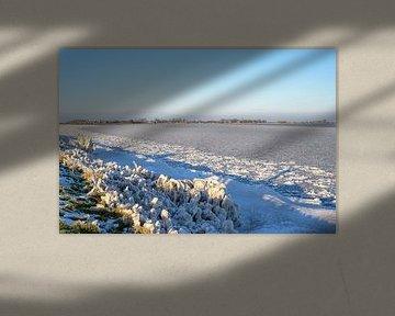 Bevroren Markermeer van Barbara Brolsma