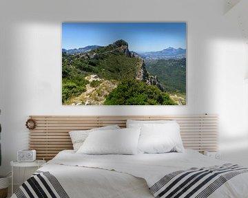 Groene vlakte en uitzicht op Puig Campana