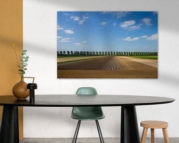 Landschap in Nederland van jaldert kraaijeveld