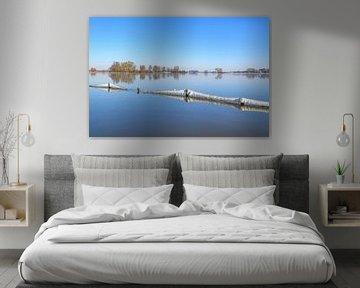 IJzig landschap aan de IJssel tijdens een koude winterochtend van Sjoerd van der Wal