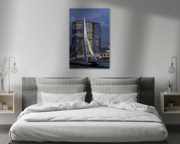 Le pont Erasmus / Le Rotterdam sur Prachtig Rotterdam