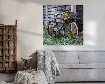 Op een oude fiets van TIZFotografie