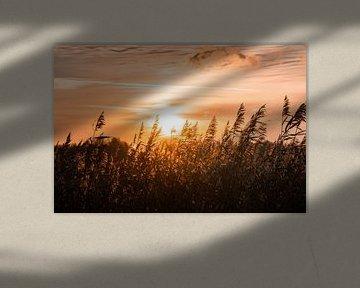 Zonsondergang in Midden-Delfland van Marcel Kool