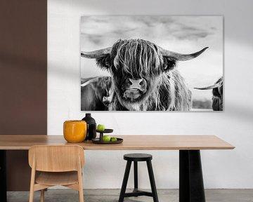 Porträt eines schottischen Highlanders in Schwarz-Weiß von KB Design & Photography (Karen Brouwer)