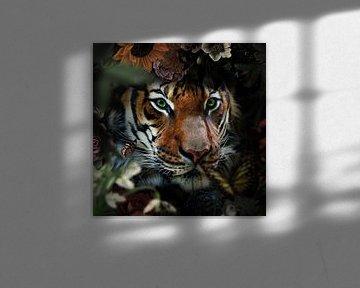 Ein Tiger schaut durch die Büsche von Bert Hooijer