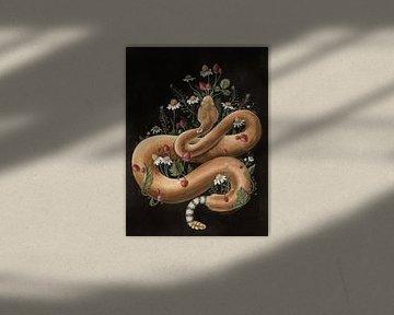 Schlange und Erdbeeren von Natalia Gorst