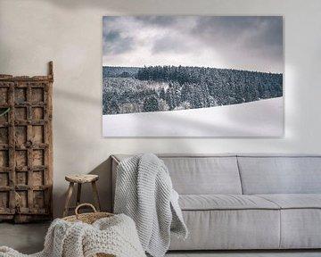 Winterlandschaft mit schneebedeckten Tannenbäumen in Bütgenbach von Daan Duvillier