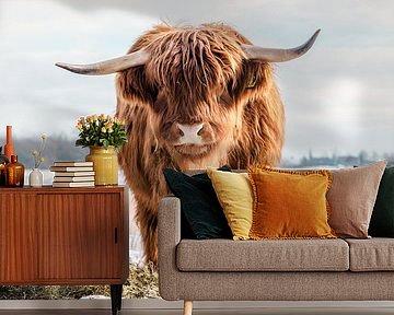 Schotse Hooglander koe in de sneeuw verticaal front van KB Design & Photography (Karen Brouwer)
