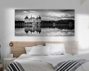 Panorama von Schloss Moritzburg in schwarz-weiß
